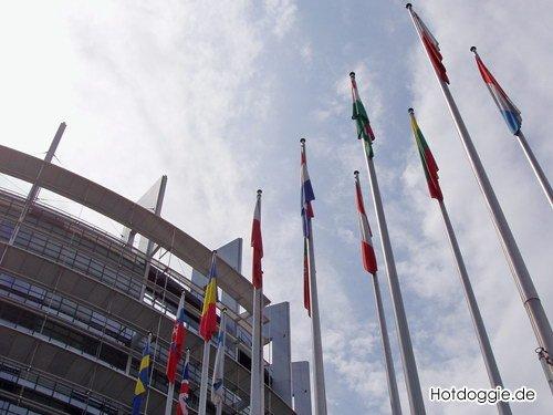 Európa Parlament magyar zászlóval