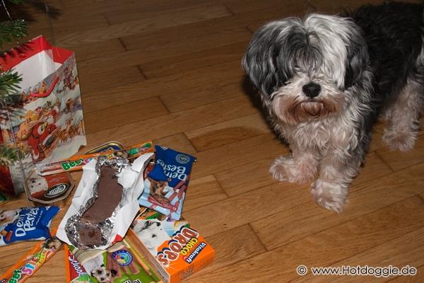 Murray kutya karácsonya