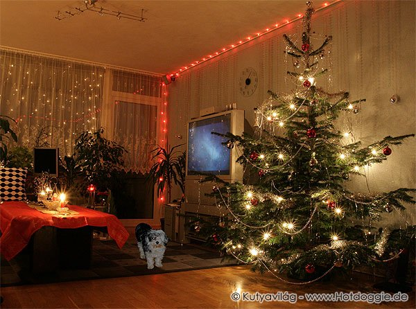 Karácsonyi történet