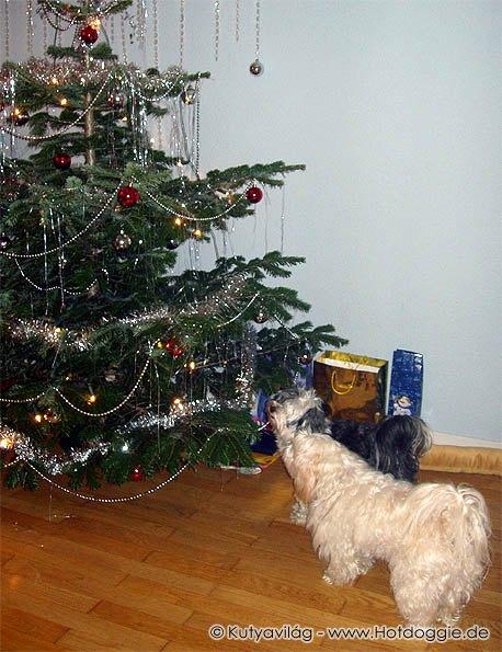 Karácsonyi történet folytatása