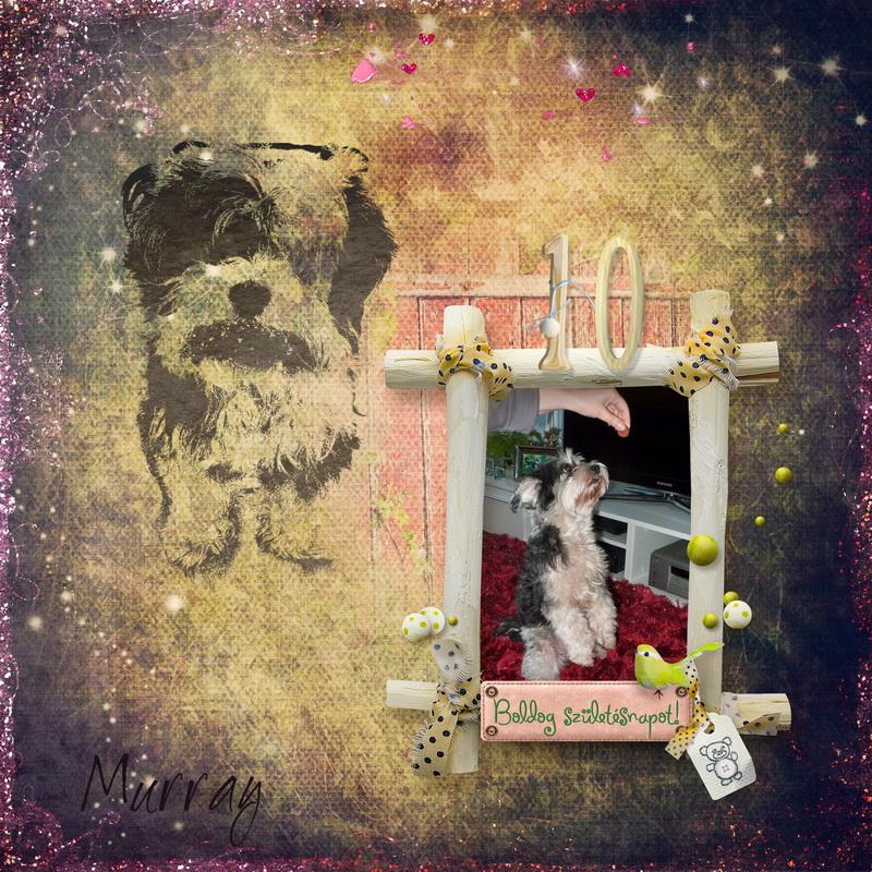 Murray kutya 10. szülinapja – Ajándék Scrapbook Szép Macicsaládtól