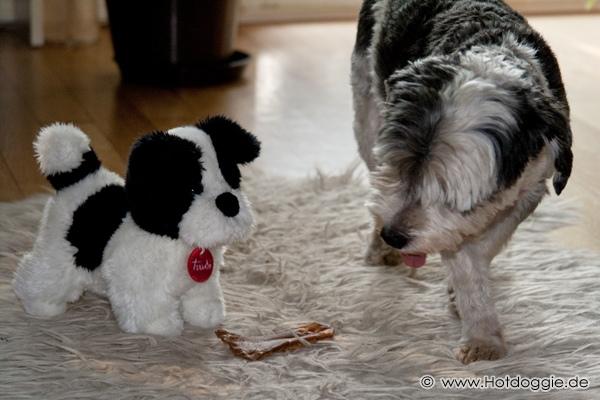 Mörri plüsskutya és Mörri kutya
