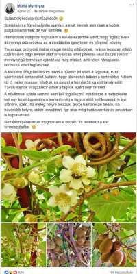 Kivi írás Kertészkedők Klubja Facebook csoportban
